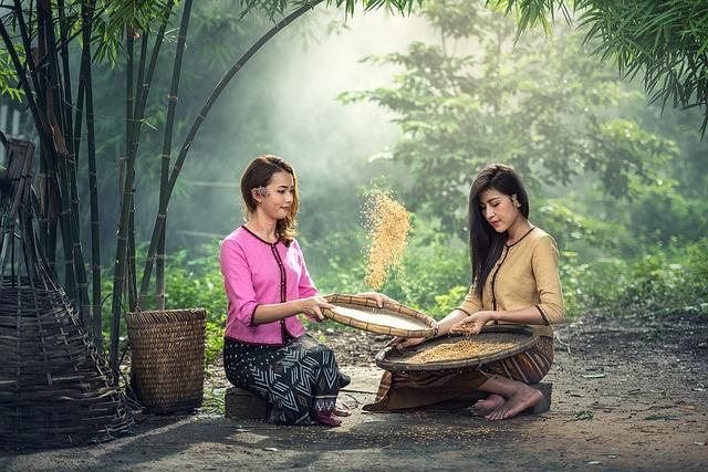 ženy s rýží